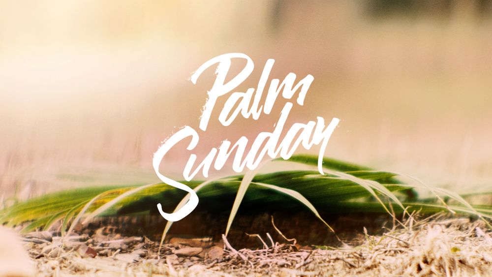 Palm Sunday 2021 Image